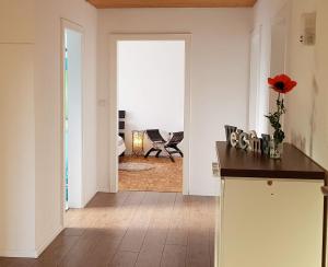 Haus am Bodensee - Hotel - Fußach
