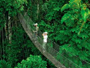 Inkaterra Reserva Amazonica (37 of 48)