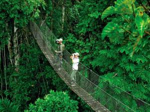 Inkaterra Reserva Amazonica (25 of 50)