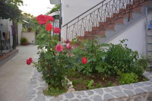 obrázek - Casa Panoramica Vintage