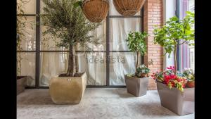 New luxury apartment in Puerta del Sol