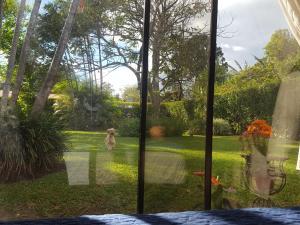 La Villa Río Segundo B&B, Bed and breakfasts  Alajuela - big - 68