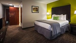 Best Western Magnolia Inn and Suites, Hotely  Ladson - big - 63
