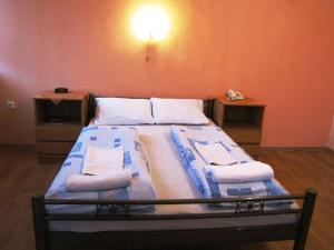 Double or Twin Room Hotel Slovan