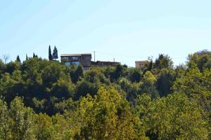 Colleverde Country House, Hotels  Urbino - big - 140