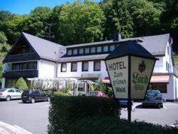 Hotel Zum grünen Wald - Dauborn-Eufingen