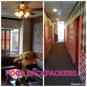 Auberges de jeunesse - Poga Backpackers