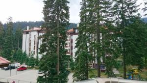 TES Flora Apartments, Apartments  Borovets - big - 213