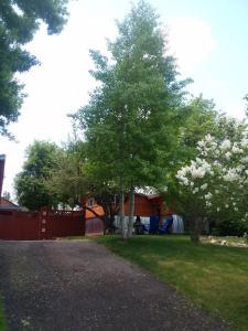 Lava Hideout Cabins, Nyaralók  Lava Hot Springs - big - 29