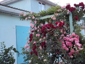 Guest House V dolinie roz - Gay-Kodzor