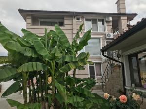 Къща за гости Харизанови