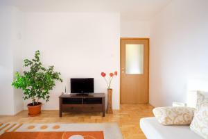 Apartment Maks, Ferienwohnungen  Trebinje - big - 6
