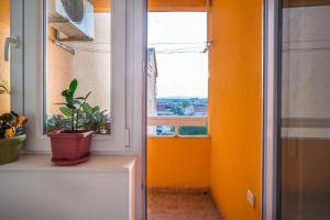 Apartment Maks, Apartmány  Trebinje - big - 13