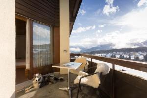 Alpenhotel Flims, Hotely  Flims - big - 27