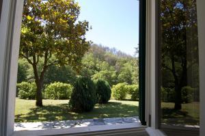 Affittacamere Graziella, Guest houses  Vernazza - big - 46