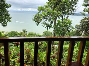 Cabaña Ara Macao Lodge - Isla Violin