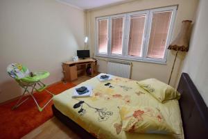 Allure, Апартаменты/квартиры  Тузла - big - 12