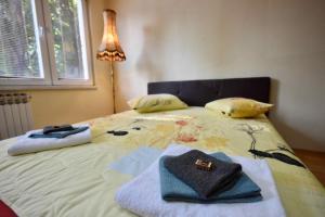 Allure, Апартаменты/квартиры  Тузла - big - 9