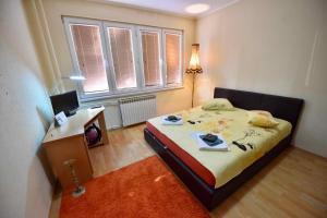 Allure, Апартаменты/квартиры  Тузла - big - 8