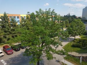 Apartament Zapleczna Kołobrzeg