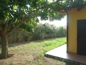 Villa Azzurra, Prázdninové domy  Capo Vaticano - big - 22
