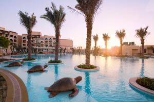 Saadiyat Rotana Resort & Villas (7 of 66)