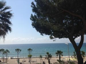 Cannes Terrace Beach Front & Sea view, Apartments  Cannes - big - 109