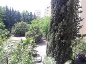 Morskoy apartment, Appartamenti  Adler - big - 2