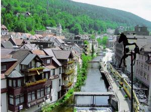 Hotel Sonne - Calmbach