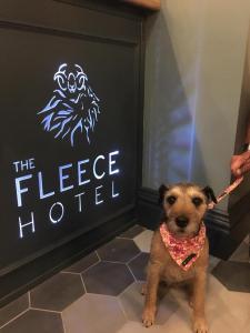 The Fleece Hotel (20 of 20)
