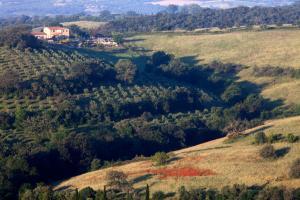 Casale Sterpeti, Panziók  Magliano in Toscana - big - 42