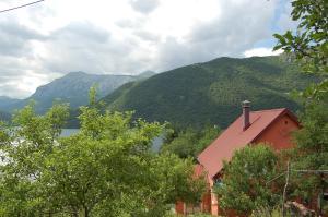 Privatni smještaj Tijanić, Pensionen  Plužine - big - 24
