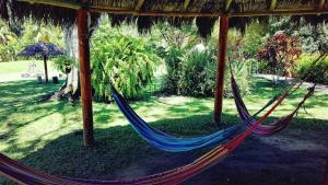Los Colores Eco Parque, Hotels  Doradal - big - 44
