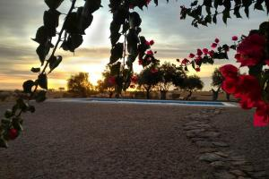 Cantar Do Grilo - Turismo Rural, Vendégházak  Vales Mortos - big - 30