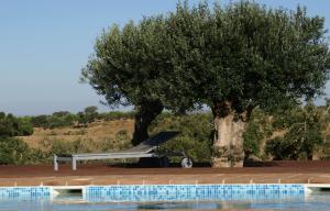 Cantar Do Grilo - Turismo Rural, Penzióny  Vales Mortos - big - 39