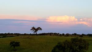 Cantar Do Grilo - Turismo Rural, Penzióny  Vales Mortos - big - 20
