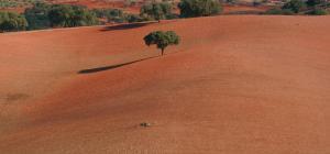Cantar Do Grilo - Turismo Rural, Penzióny  Vales Mortos - big - 27