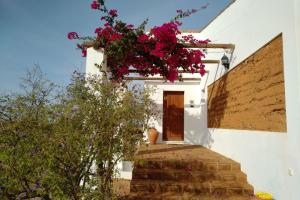 Cantar Do Grilo - Turismo Rural, Vendégházak  Vales Mortos - big - 23