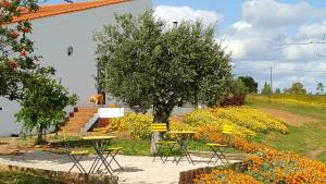 Cantar Do Grilo - Turismo Rural, Vendégházak  Vales Mortos - big - 26