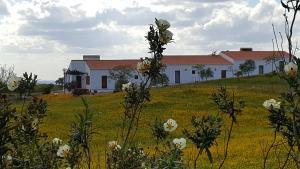 Cantar Do Grilo - Turismo Rural, Vendégházak  Vales Mortos - big - 25