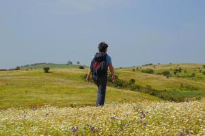 Cantar Do Grilo - Turismo Rural, Penzióny  Vales Mortos - big - 17
