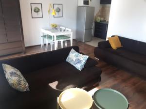 Apartament Shuma