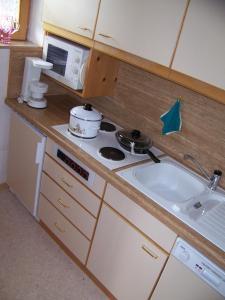 Gästehaus Rachelblick, Apartmanok  Frauenau - big - 41