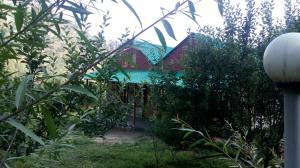 Auberges de jeunesse - Apple tree