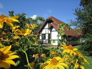 Ferienhaus Deichgraf 86 im Feriend - Bassenfleth