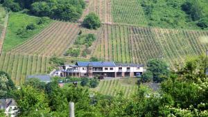 Urlaubsweingut Zecherhof - Bremm