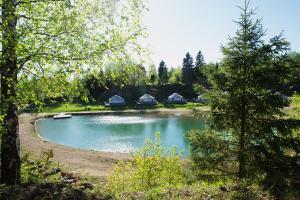 Eco-Hotel Yurt Complex