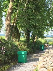 Clondanagh B&B and Farm-on-the-Lake, Bed and breakfasts  Tulla - big - 64