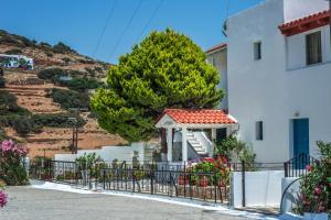 Villa Eleonora Andros Greece