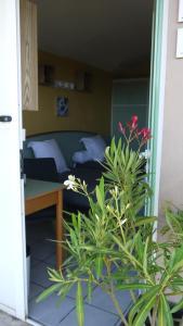 VVF Villages « Les Collines de Saint-Tropez » La Garde-Freinet, Üdülőközpontok  La Garde-Freinet - big - 41